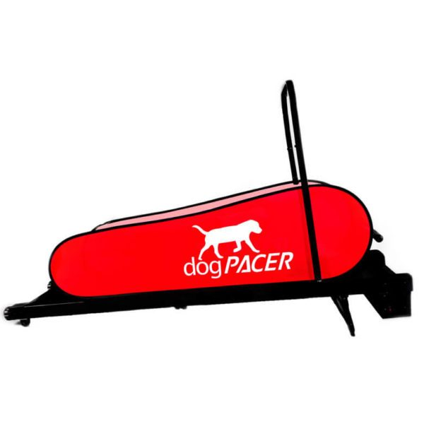 Dogpacer Norge