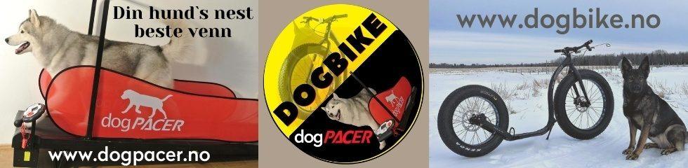 dogbike.no