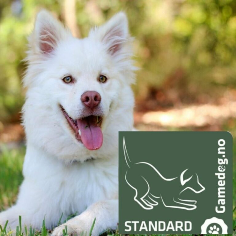 Gamedog.no, standard