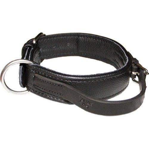 eco leather collar halsbånd julius k-9
