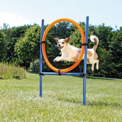 Trixie Agility Ring Hinder