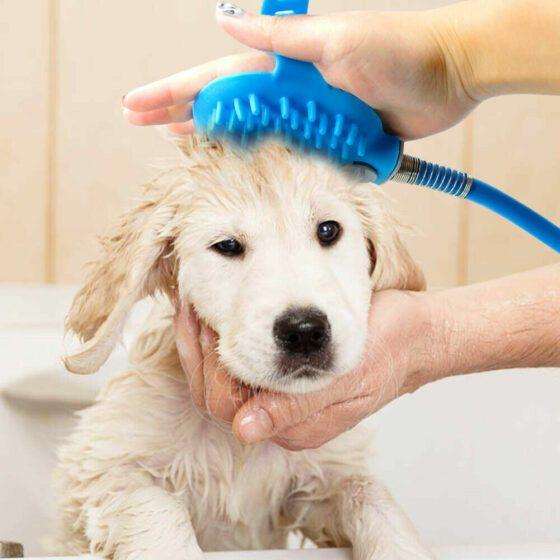 Vaskesett utendørs til hund